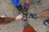 Footwear - You Pick