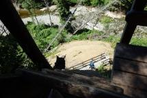 Logan Creek