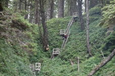 Ladders out of Tsusiat