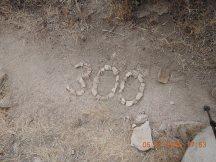 Mile 300
