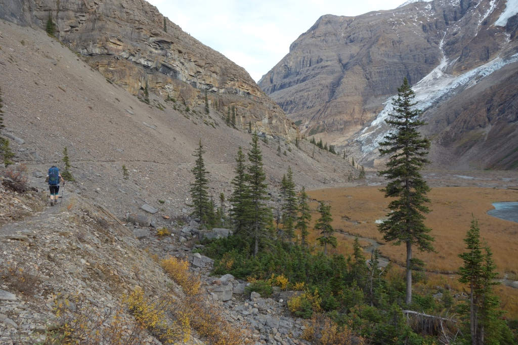 Glacier Plains After Emperor Falls Campground